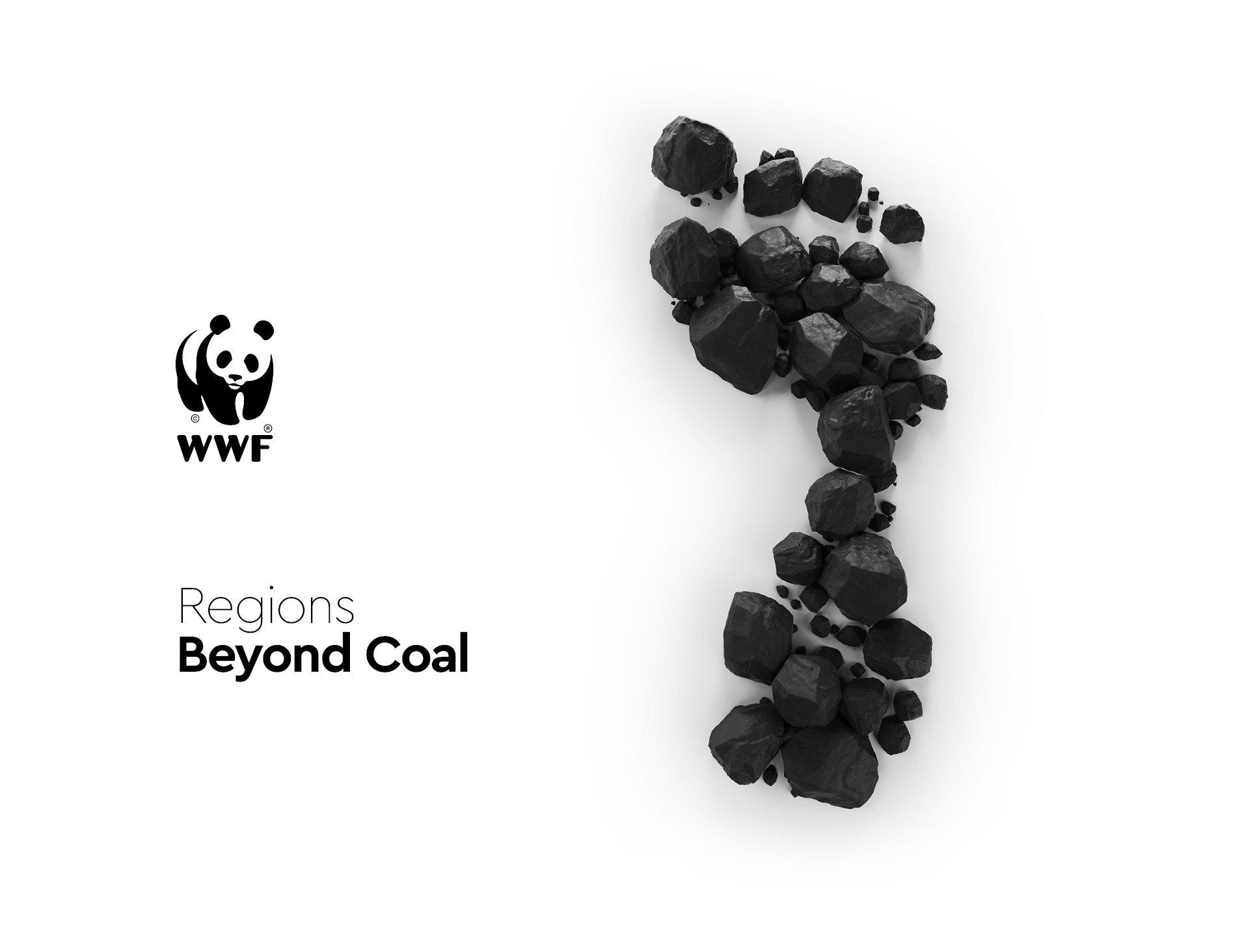 WWF just transition